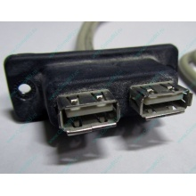 USB-разъемы HP 451784-001 (459184-001) для корпуса HP 5U tower (Черкесск)