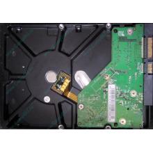 Б/У жёсткий диск 500Gb Western Digital WD5000AVVS (WD AV-GP 500 GB) 5400 rpm SATA (Черкесск)